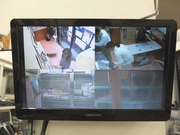 横浜 金沢区の動物病院 マーサ動物病院 医療設備 監視モニター