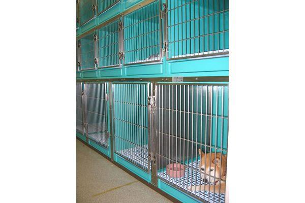 横浜 金沢区の動物病院 マーサ動物病院 医療設備 預かり用ケージ