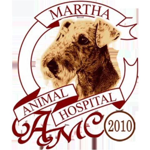 横浜 金沢区の動物病院 マーサ動物病院動物医療センター